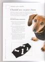 modeles de manteaux pour chiens Chanda17