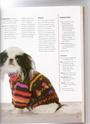modeles de manteaux pour chiens Chanda27
