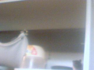 Mes rats Image_20