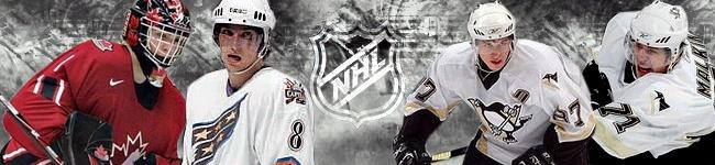 Ligue de hockey Simulé Professionel