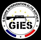 G.I.E.S. Groupe d'Intervention Elite Softair