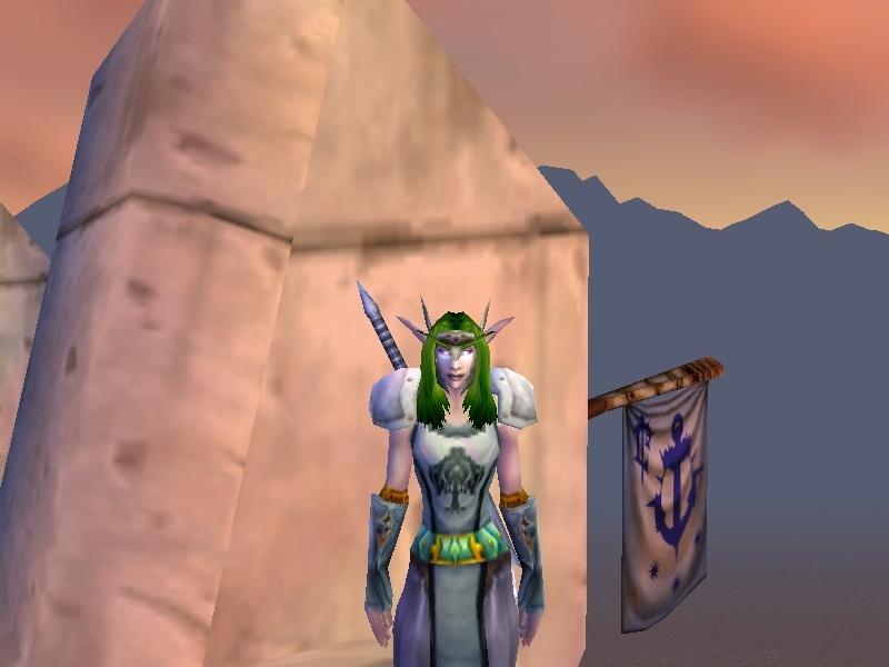 My Adnil character lvl 46 Warrior Adnil210