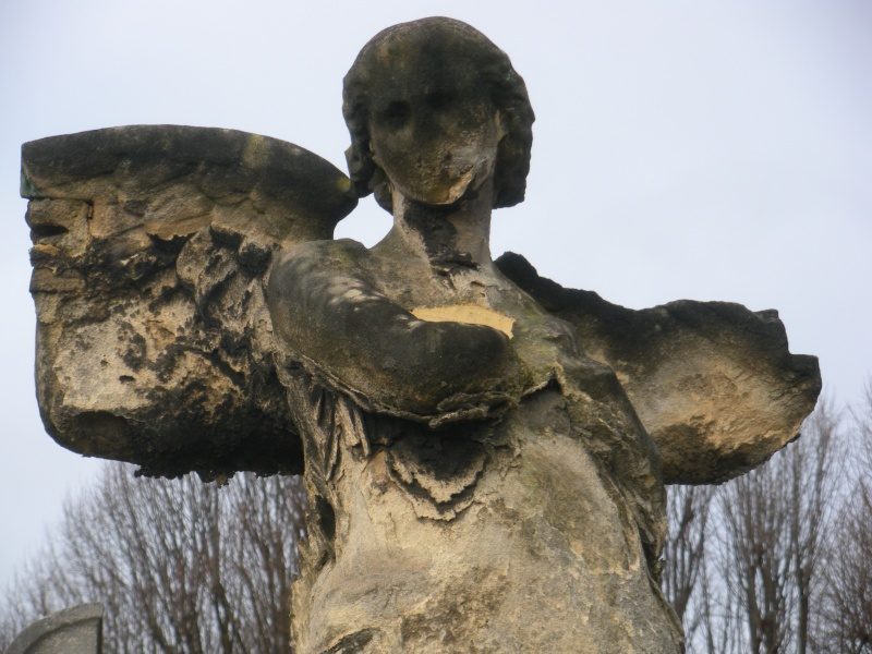 Photos d'Anges 2 Dscn4116