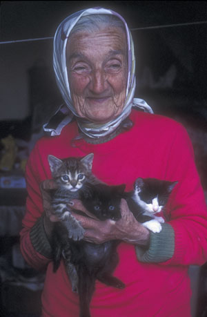 The Priest, His Aunt...and her cats... Old_la10