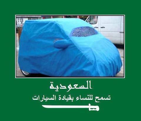 Après la burqa et le niqab au volant, le k-way bientôt interdit? 53742110