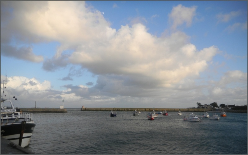 Photos du Cotentin 2 - Page 2 Copie_29