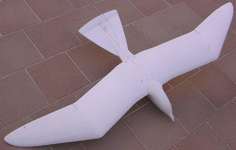 planeadores Gaviot10