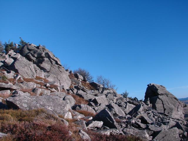 28 photos prise sur les hauteurs du Lizieu (1388 mètre) 410