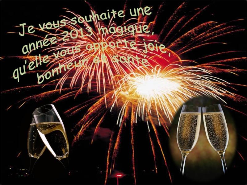 voeux 2013 Nouvel10