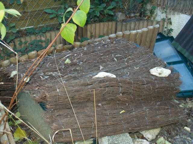 SUD de la France : exemple de fosse d'hibernation pour Testudo graeca Pc151720