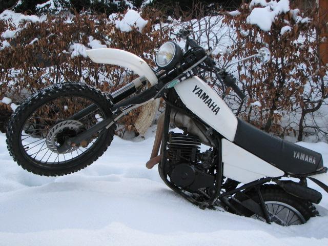 en petit tour sous la neige Img_5510