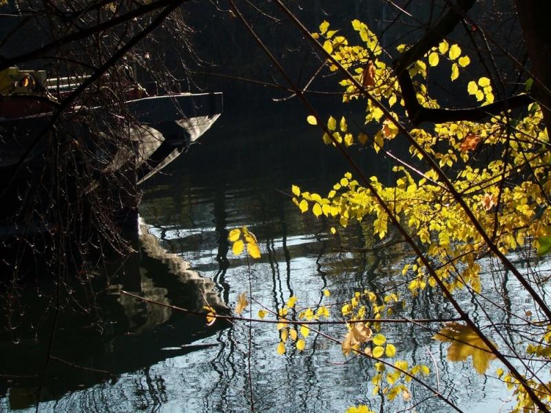Promenades sur les berges de la Seine 28_nov12
