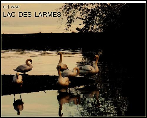 ( Photo des Lieux ) Lac_de10