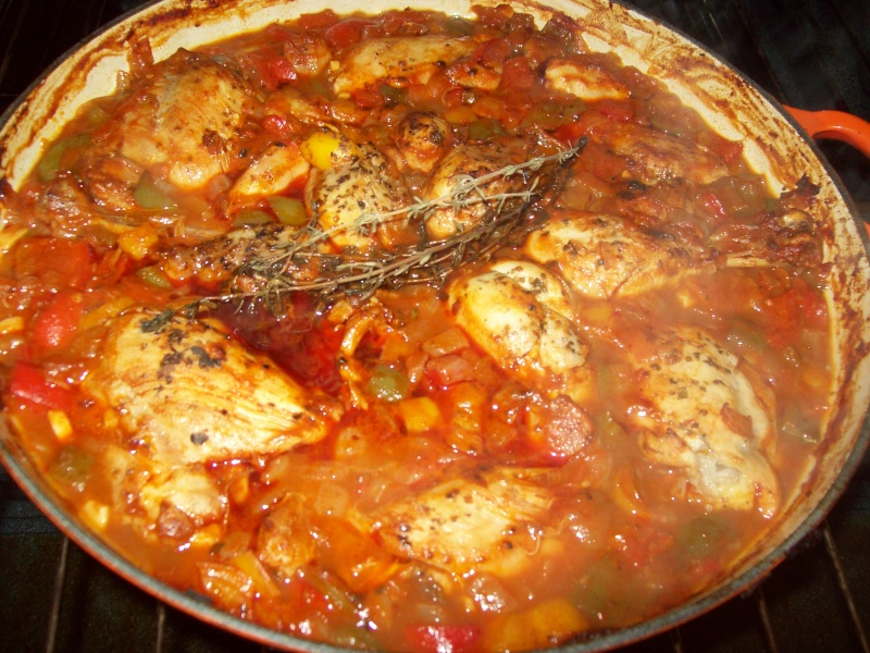 Paprika Braised Chicken 104_6010