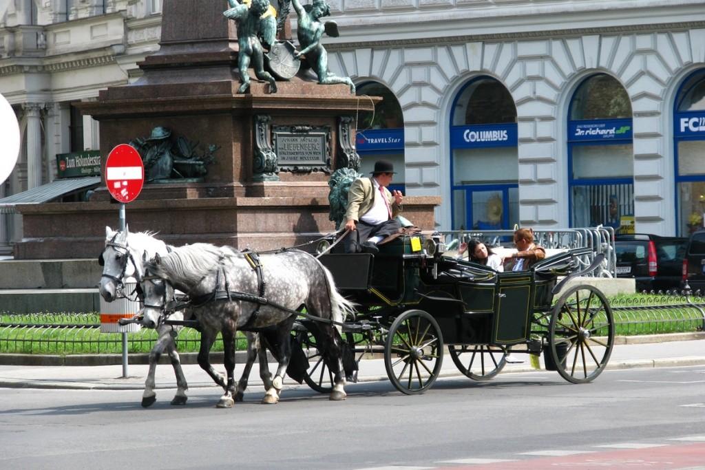 Week-end prelungit la Viena 2011 Pictur47