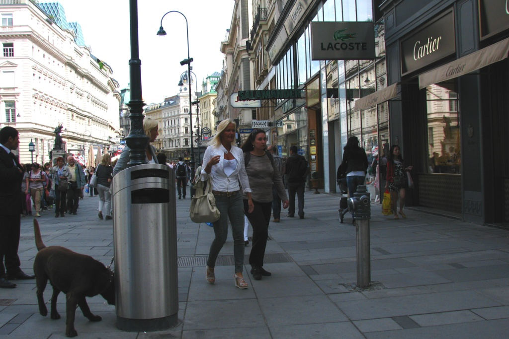 Week-end prelungit la Viena 2011 Pictur84