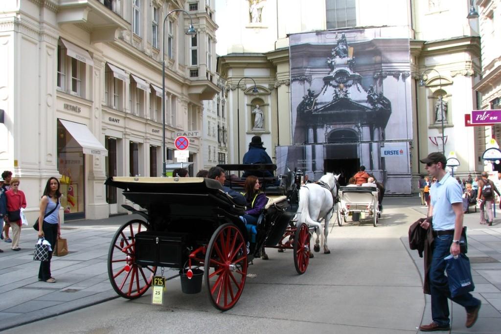 Week-end prelungit la Viena 2011 Pictur89