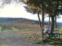 La mia prima endurata - Toscana - Castellina in Chianti 27122011