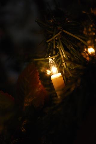 Nos décos de Noël Dsc_0110