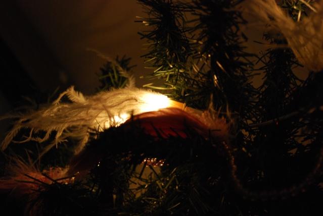 Nos décos de Noël Dsc_0111