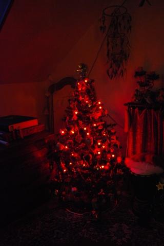 Nos décos de Noël Dsc_0210
