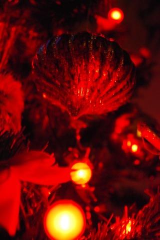 Nos décos de Noël Dsc_0212