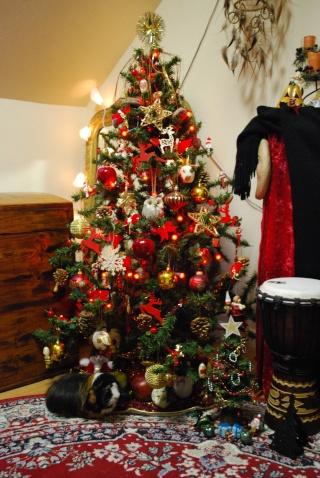 Nos décos de Noël Je_sui13
