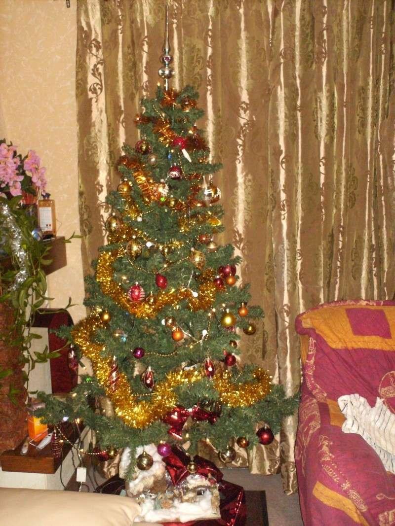 Votre décoration de Noel Hpim0710