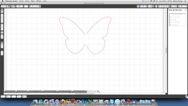 découpe d'un papillon Captur12