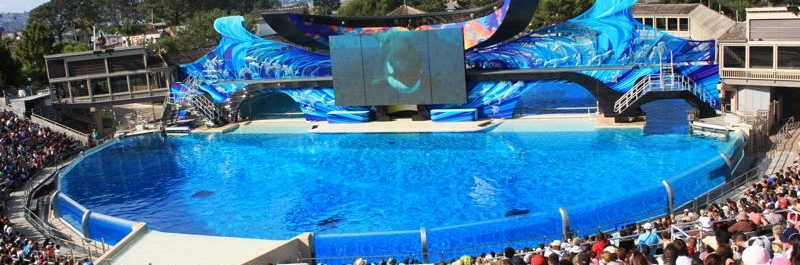 [Récapitulatif des news] Sea World San Diego 2013 Sandie10