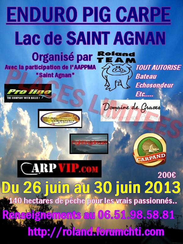 PIG CARPE 2013 Affich26