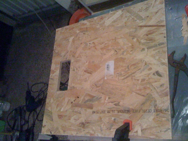 construction de terrarium osb 120x60x55 Img_0812