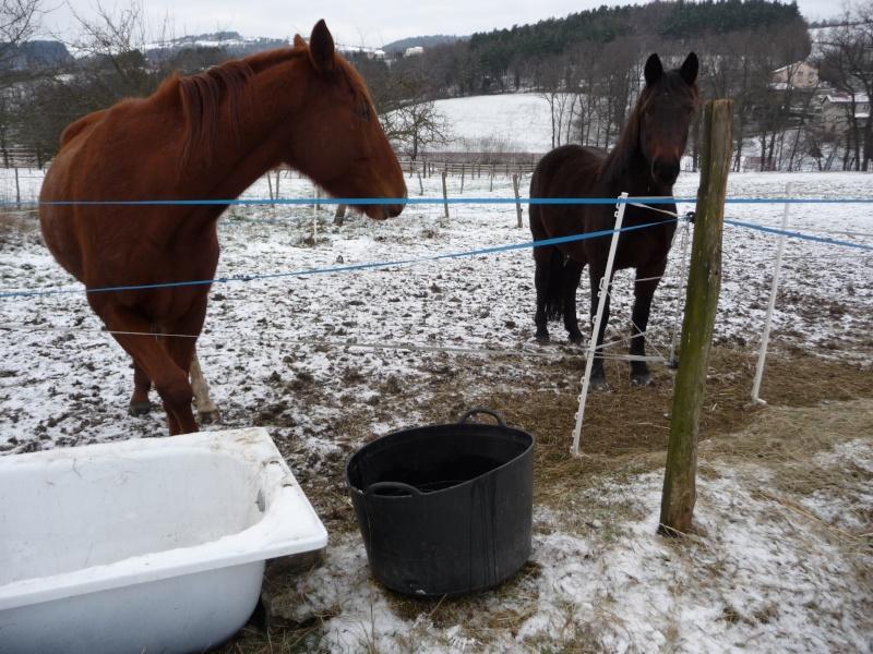 gérer l'eau en hiver dans les parcs... P1010210