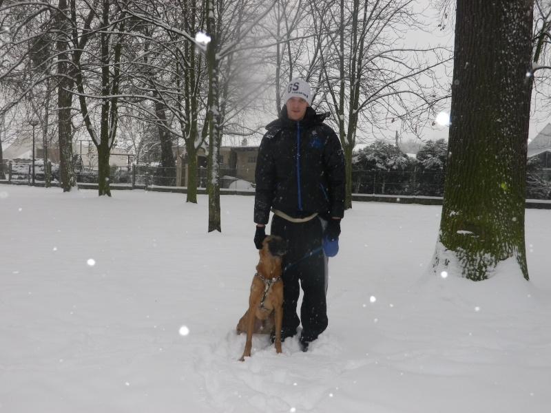 conflit entre mes deux chiens  Imgp3629
