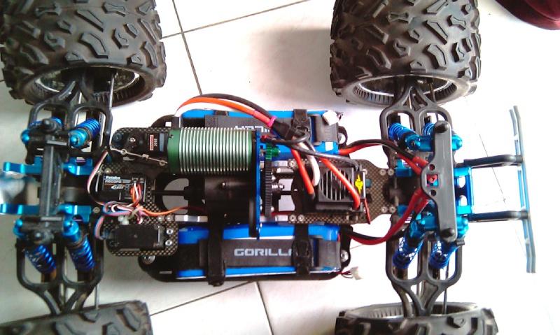 Gorilla maxx Imag0212