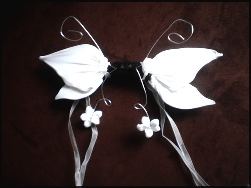 Les ailes de la comtesse . P1210011