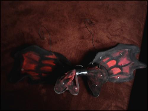 Les ailes de la comtesse . P1210012