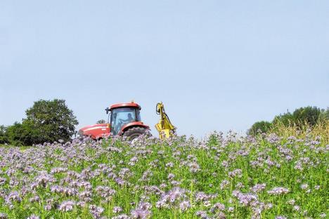 La politique agricole commune : enjeux, bilans et perspectives Jachar10