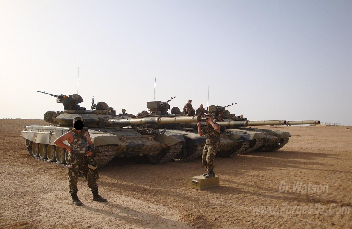 القوات البرية الجزائرية  T90310