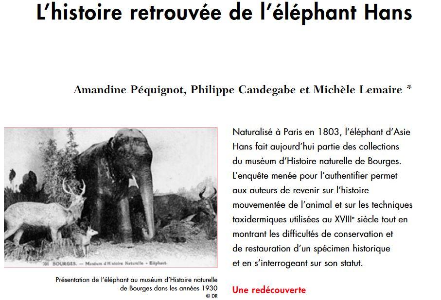 animaux - Exposition Les animaux du roi à Versailles 191