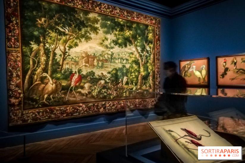 Exposition Les animaux du roi à Versailles - Page 2 68965310