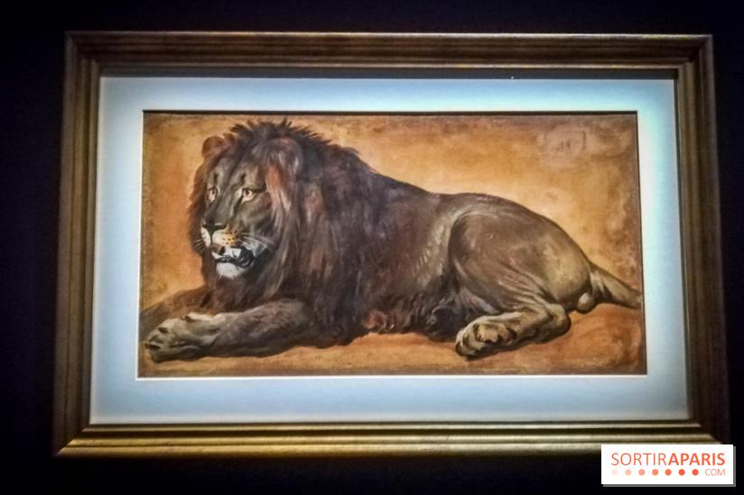 Exposition Les animaux du roi à Versailles - Page 2 68980510