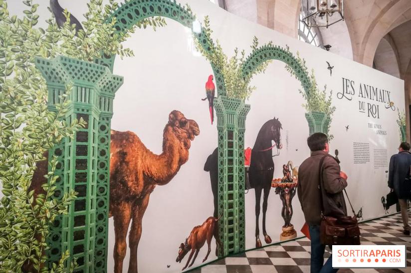 Exposition Les animaux du roi à Versailles - Page 2 68980910