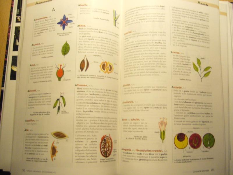 Livre sur les plantes aromatiques,condimentaires et à épices P1110517