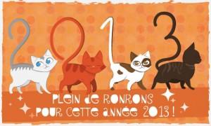 BONNE ANNEE 2013 Bonne-11