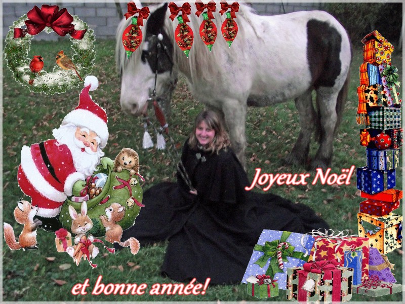 concours photo Noël et nouvel an - Page 3 Kyra310