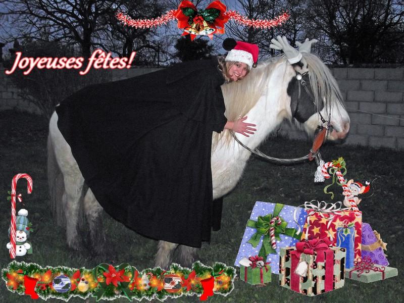 concours photo Noël et nouvel an - Page 3 Kyra_110