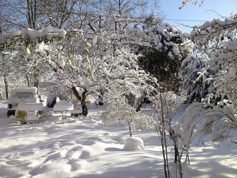délire dans la neige Neige110