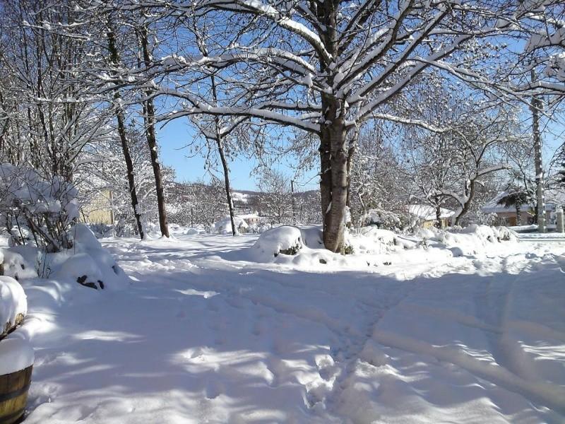 délire dans la neige Neige113