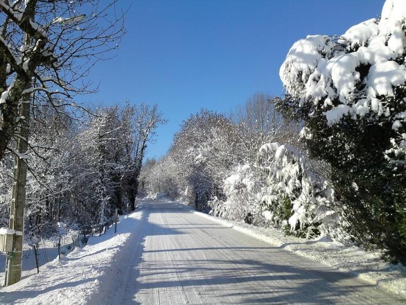 délire dans la neige Neige710